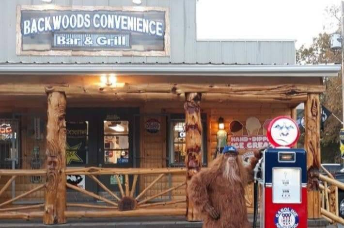 Backwoods convenience Bar and Grill | restaurant | 11029 Hopewell Rd, Mineral Point, MO 63660, USA