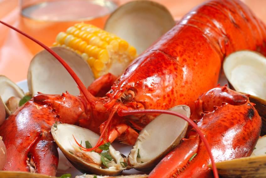 THE LOBSTER GUY.COM | restaurant | 296 Great Island Rd, Narragansett, RI 02882, USA | 4012843104 OR +1 401-284-3104