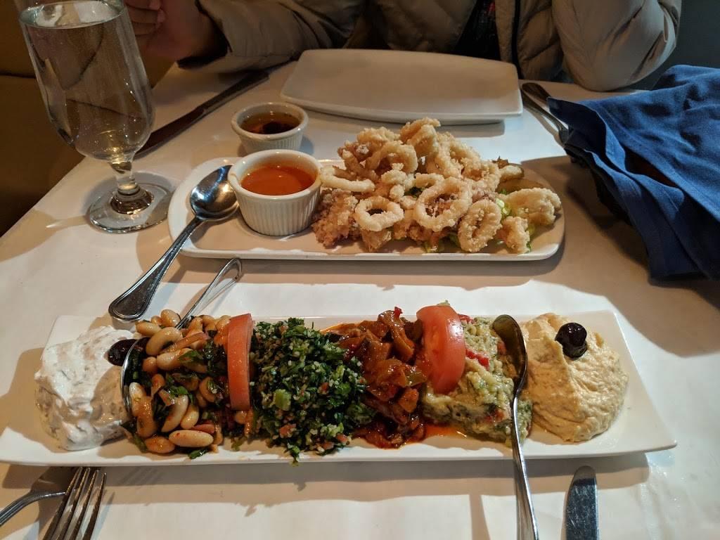 Turkish Grill   restaurant   4203 Queens Blvd, Sunnyside, NY 11104, USA   7183923838 OR +1 718-392-3838