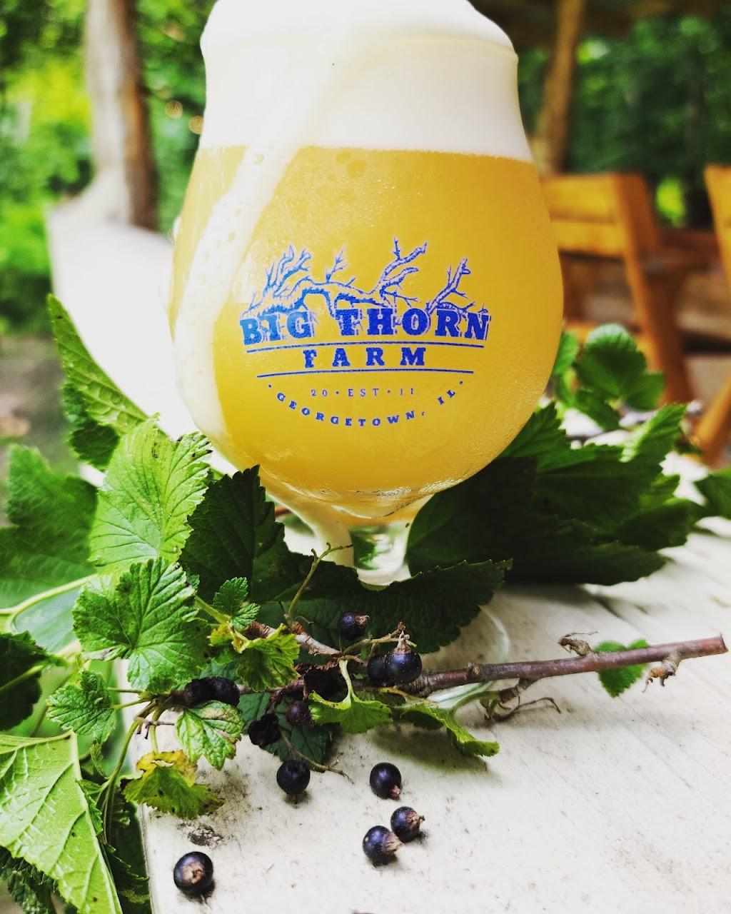 Big Thorn Farm & Brewery   restaurant   14274 600 North Rd, Georgetown, IL 61846, USA   2175970156 OR +1 217-597-0156