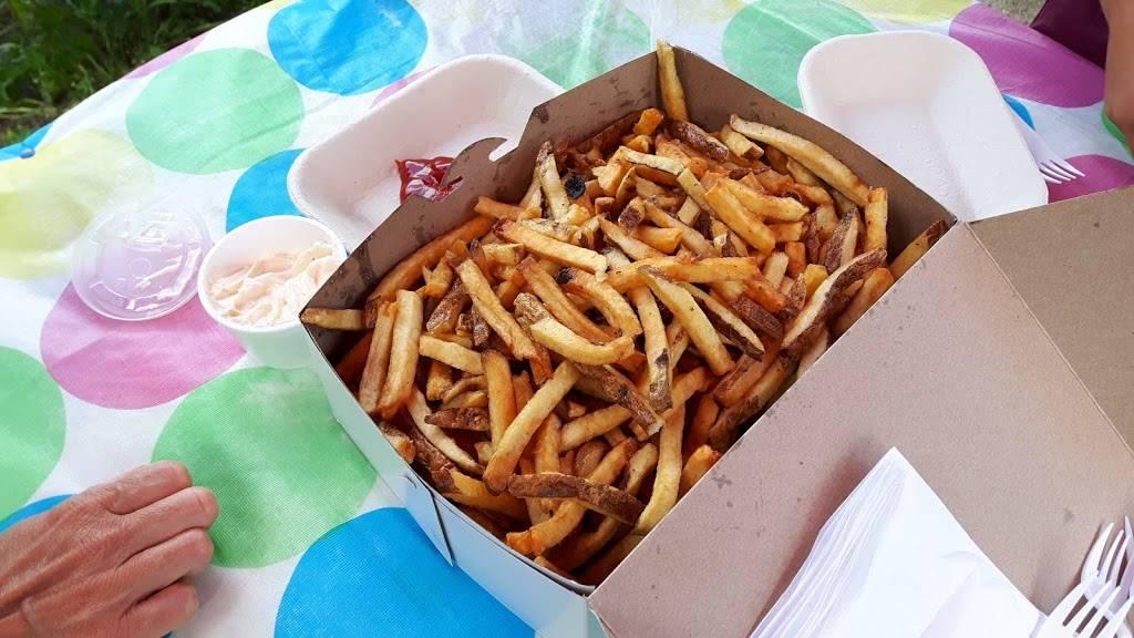 Chip Wagon | restaurant | 406060 Highway 4, Flesherton, ON N0C 1E0, Canada | 5192709704 OR +1 519-270-9704