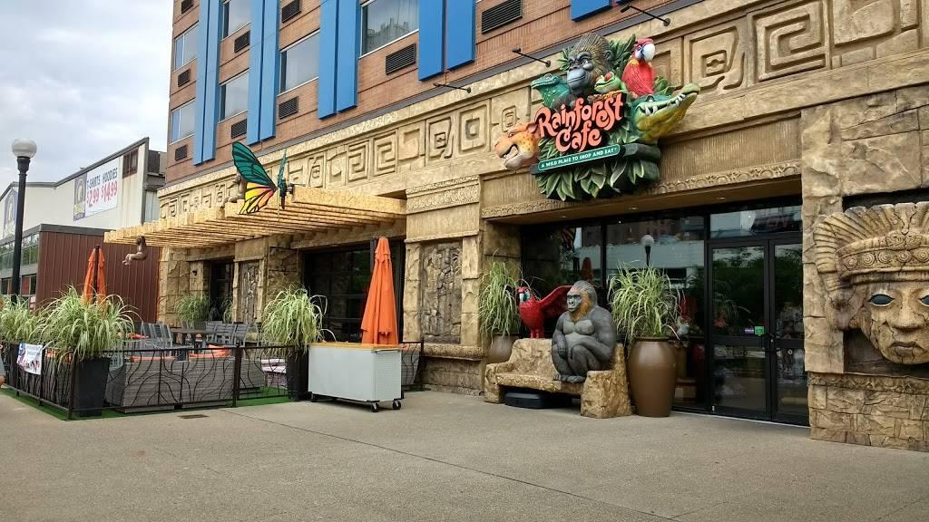 Rainforest Cafe Niagara Falls USA   restaurant   300 3rd St, Niagara Falls, NY 14303, USA   7162782626 OR +1 716-278-2626