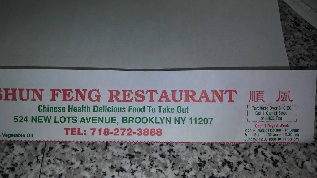 Shun Feng | restaurant | 524 New Lots Ave, Brooklyn, NY 11207, USA | 7182723888 OR +1 718-272-3888