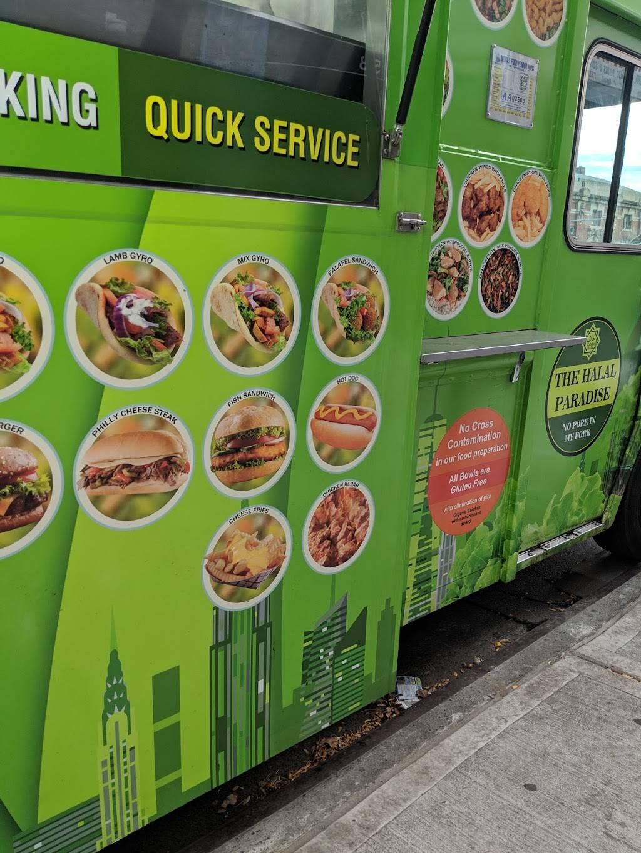 The Halal Paradise (Food Truck) | restaurant | 24 4th Ave, Brooklyn, NY 11217, USA