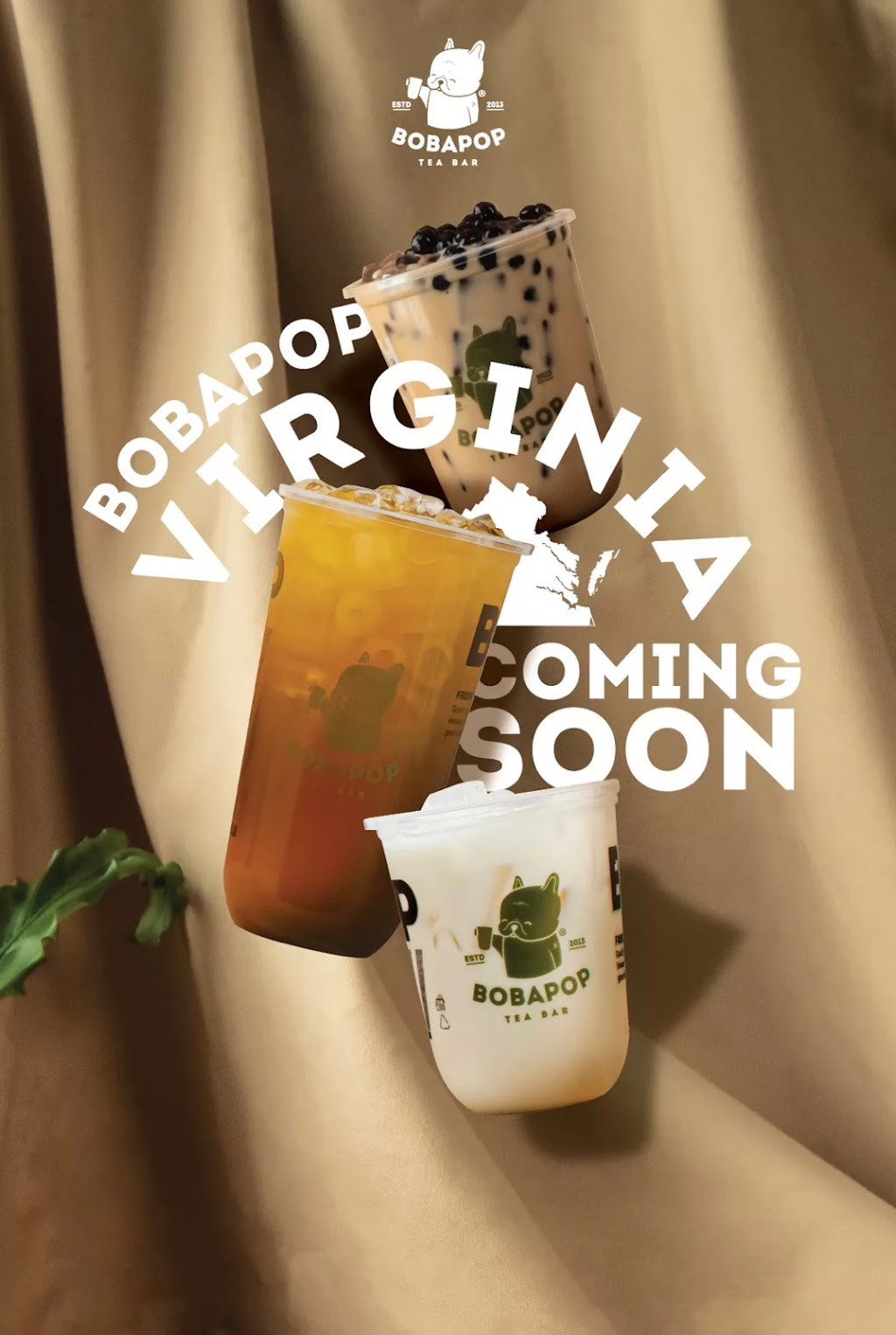 BoBaPoP Tea Bar | cafe | 2831 Gallows Rd, Falls Church, VA 22042, USA | 4348124173 OR +1 434-812-4173