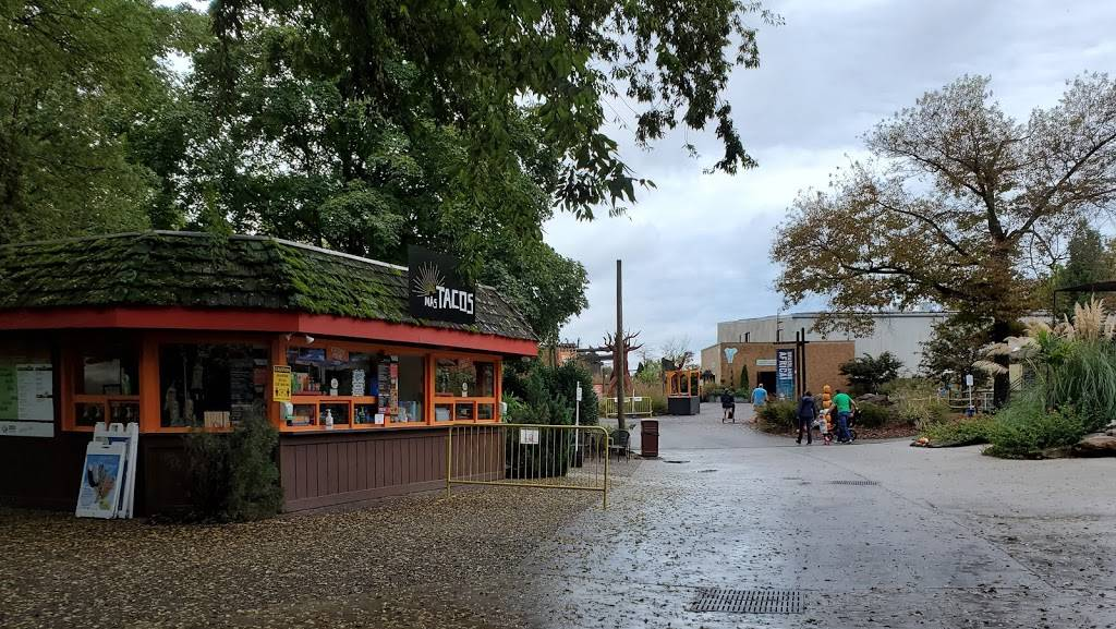 Mas Tacos | restaurant | 3500 Knoxville Zoo Dr, Knoxville, TN 37914, USA