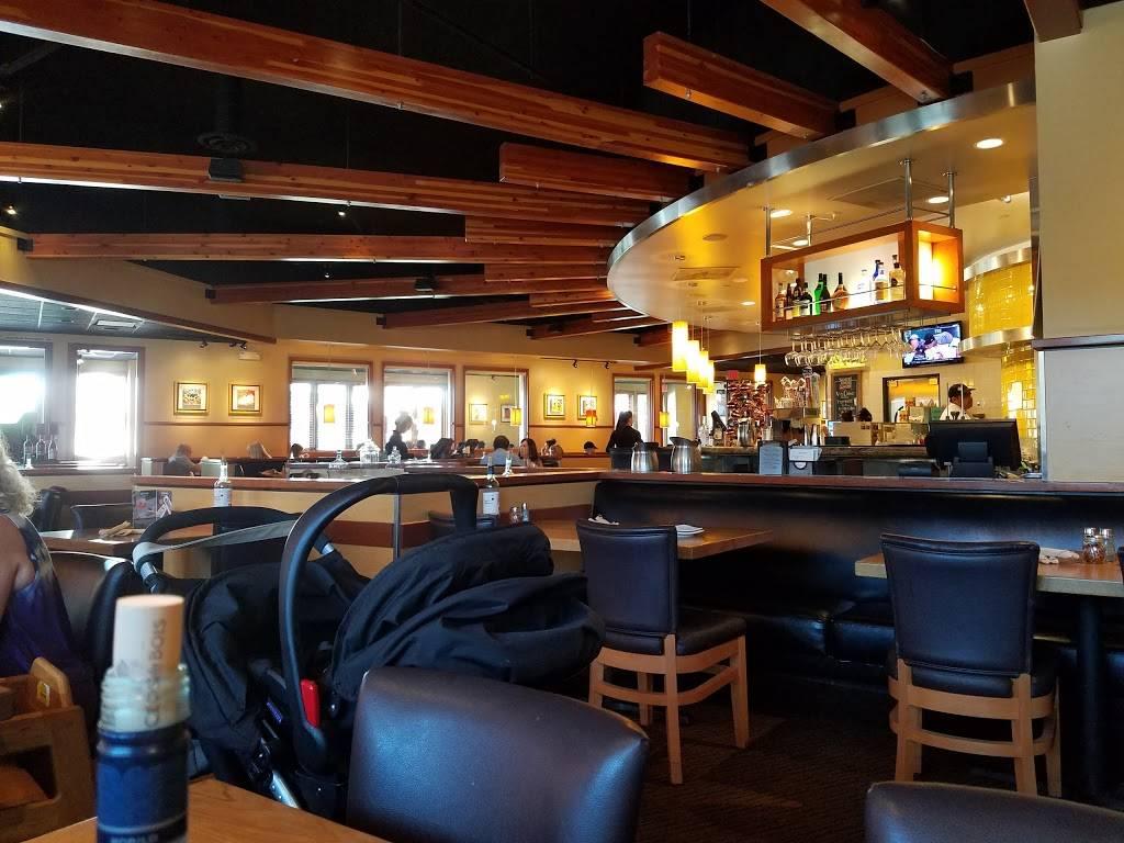 California Pizza Kitchen At Desert Ridge Restaurant 21001 N Tatum Blvd Phoenix Az 85050 Usa