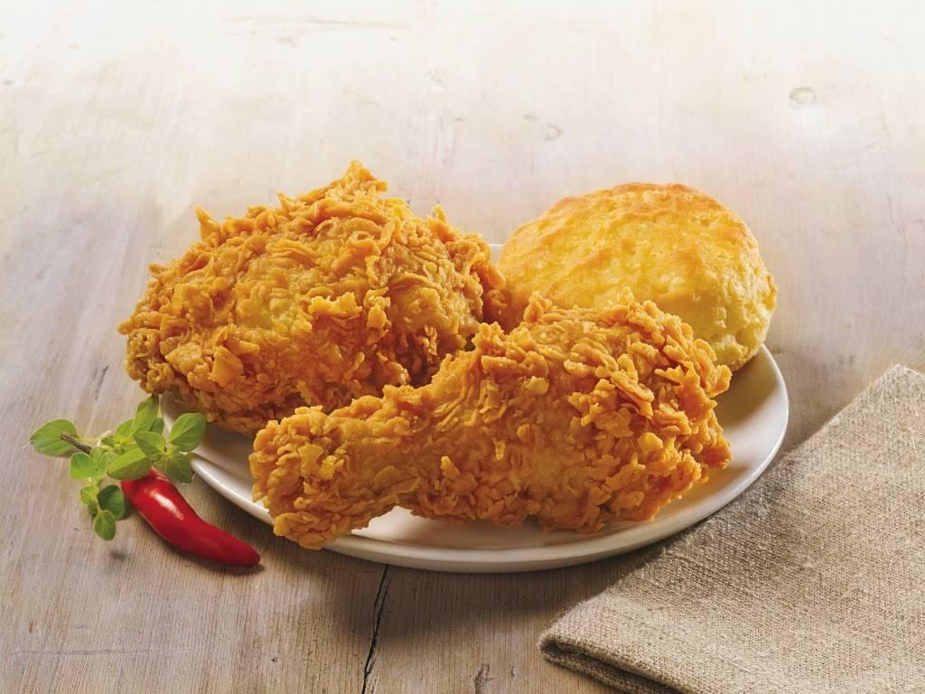 Popeyes Louisiana Kitchen | restaurant | 8968 FL-52, Hudson, FL 34667, USA | 7278626391 OR +1 727-862-6391