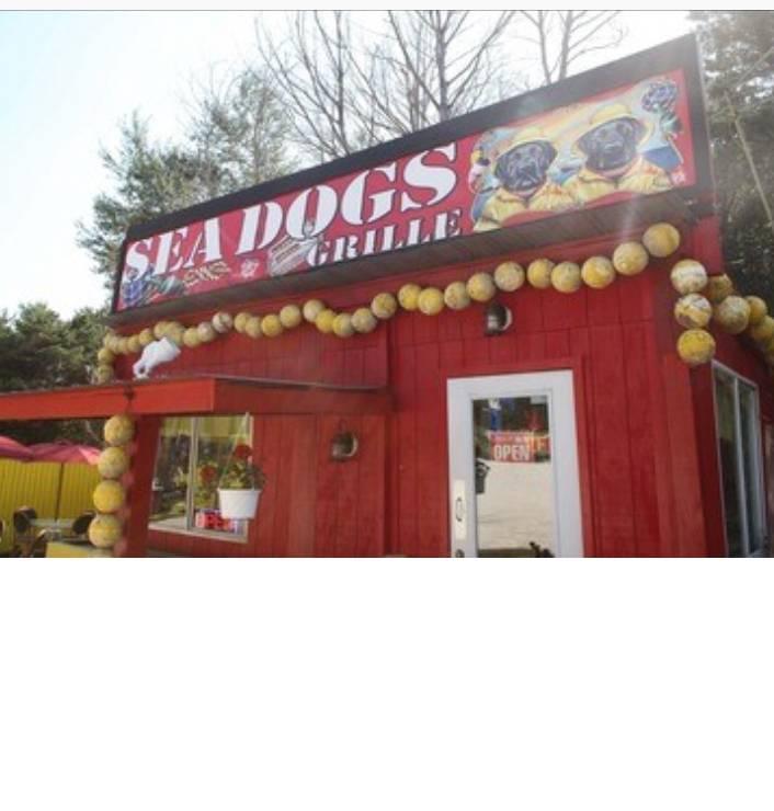 Sea Dogs Grille | restaurant | 647 NJ-72, Barnegat, NJ 08005, USA | 6096984430 OR +1 609-698-4430