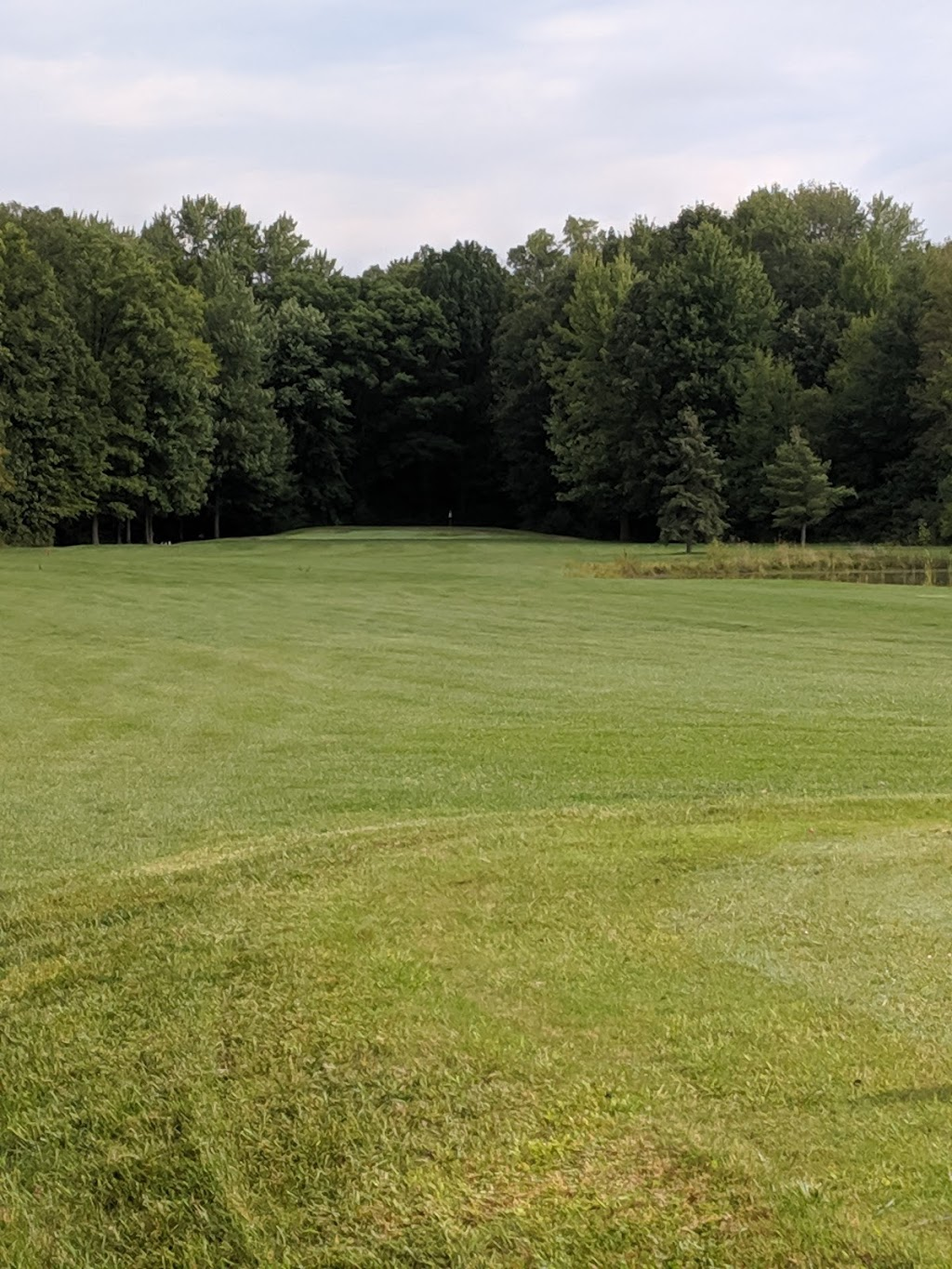 Little Camilles By The Green @ Michigan Meadows Golf | restaurant | 4575 County Line Rd, Casco, MI 48064, USA | 5867277029 OR +1 586-727-7029