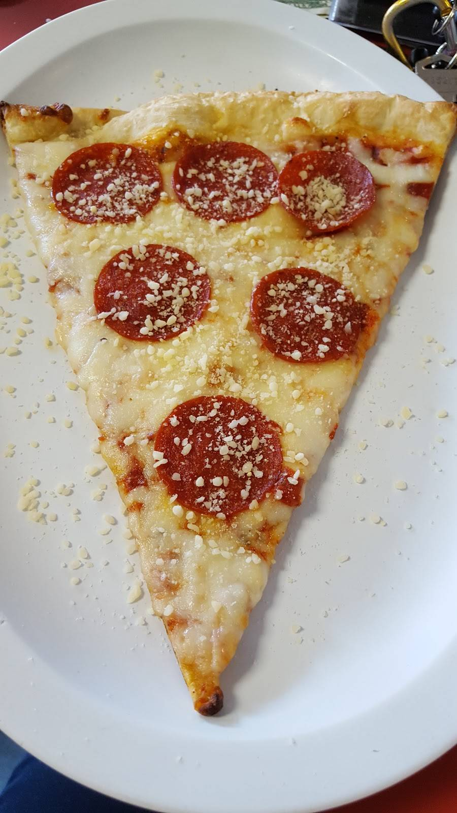 Rays Ny Pizza | meal delivery | 442 Newtown Rd, Virginia Beach, VA 23462, USA | 7574900060 OR +1 757-490-0060
