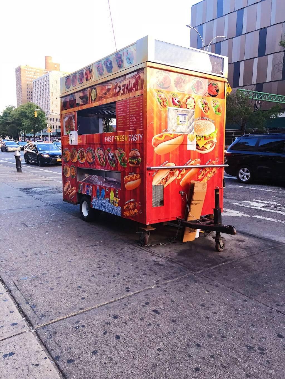 Halal Cart | restaurant | 122 Delancey St, New York, NY 10002, USA