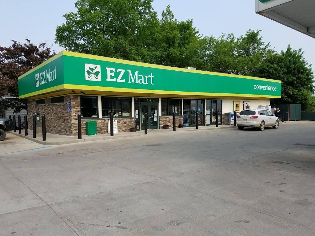 Hart EZ Mart | meal takeaway | 223 S State St, Hart, MI 49420, USA | 2318730165 OR +1 231-873-0165