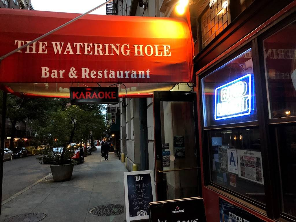 The Watering Hole | restaurant | 106 E 19th St, New York, NY 10003, USA | 2126745783 OR +1 212-674-5783
