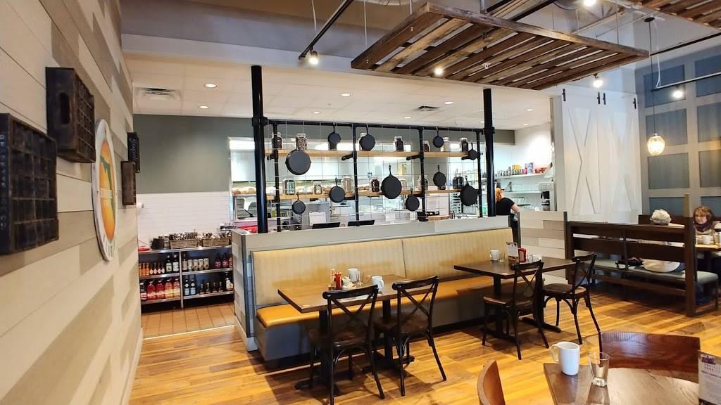 First Watch | cafe | 1765 Dunlawton Ave #104, Port Orange, FL 32129, USA | 3866268018 OR +1 386-626-8018