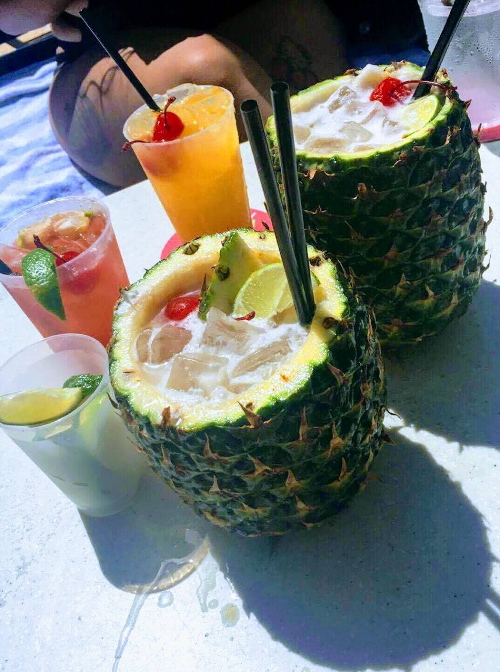 The Clevelander Bar   night club   1020 Ocean Dr #1, Miami Beach, FL 33139, USA   3055324006 OR +1 305-532-4006