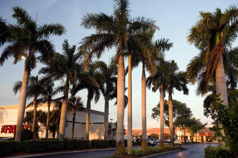 Oakwood Square | shopping mall | 398 N Congress Ave, Boynton Beach, FL 33426, USA