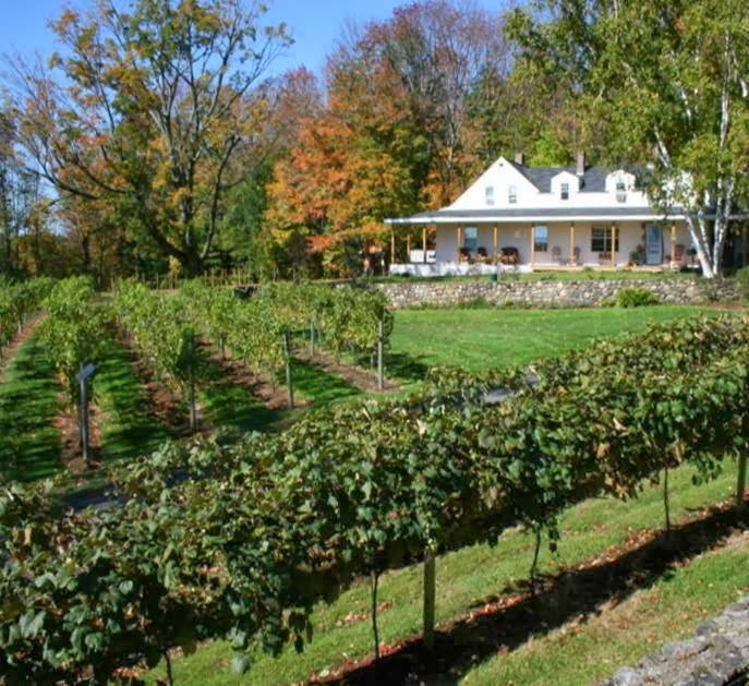 Gilmanton Winery and Restaurant | restaurant | 528 Meadow Pond Rd, Gilmanton, NH 03237, USA | 6032678251 OR +1 603-267-8251