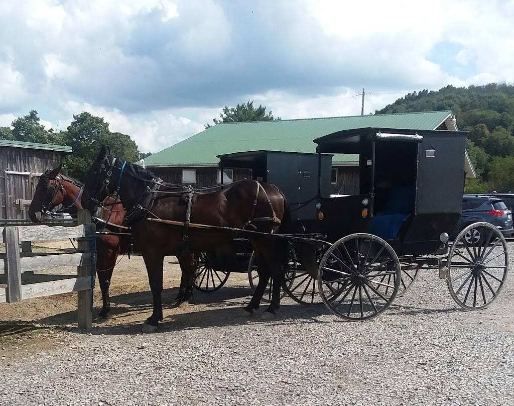 Amish House - Restaurant | 1103 Dayton Smicksburg Rd ...