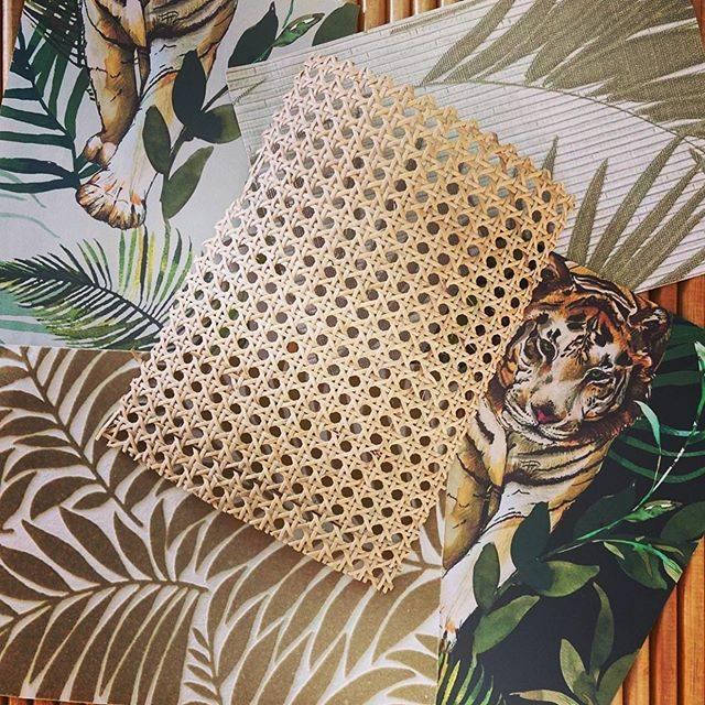Tigre Miami   restaurant   620 NE 78th St, Miami, FL 33138, USA