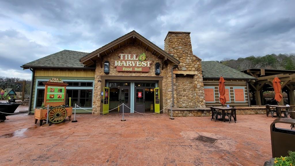 Till Harvest Food Hall   restaurant   Wildwood Grove Dollywood Theme Park, Pigeon Forge, TN 37863, USA